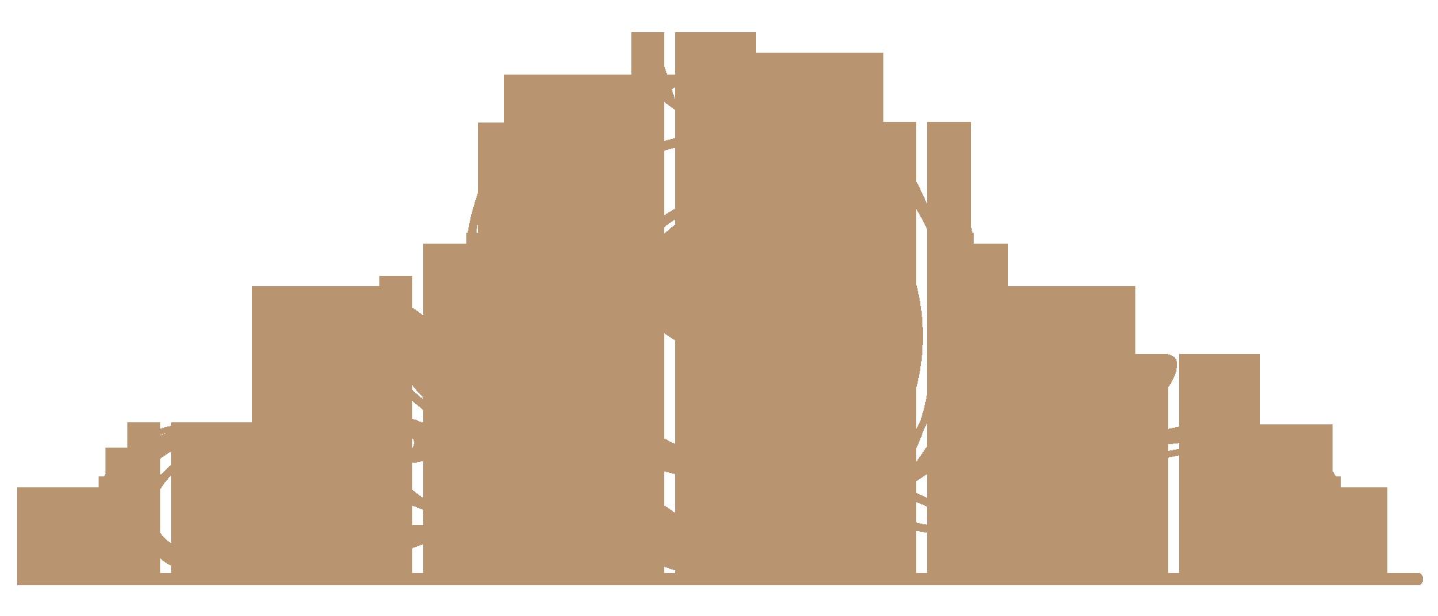 Hotel Salis